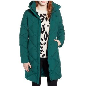 THE NORTH FACE Miss Metro Hooded Water Resistant Down Green Parka Coat NEW Sz L